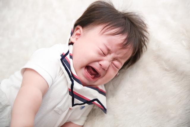 人間の赤ちゃんと愛犬の関係性とは?【ママ必見です】